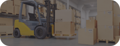 Warehousing and customs services